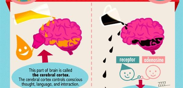 brainbeercoffee