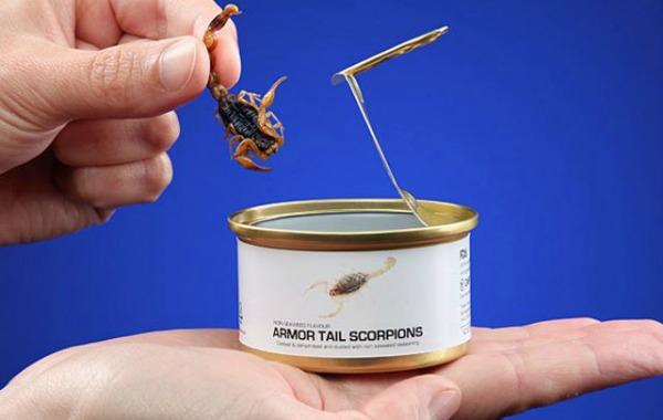 bug-tins