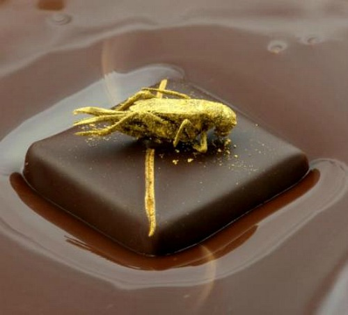 cricket-chocolates