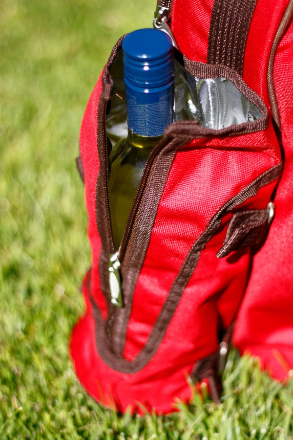 picnic-backpack-wine