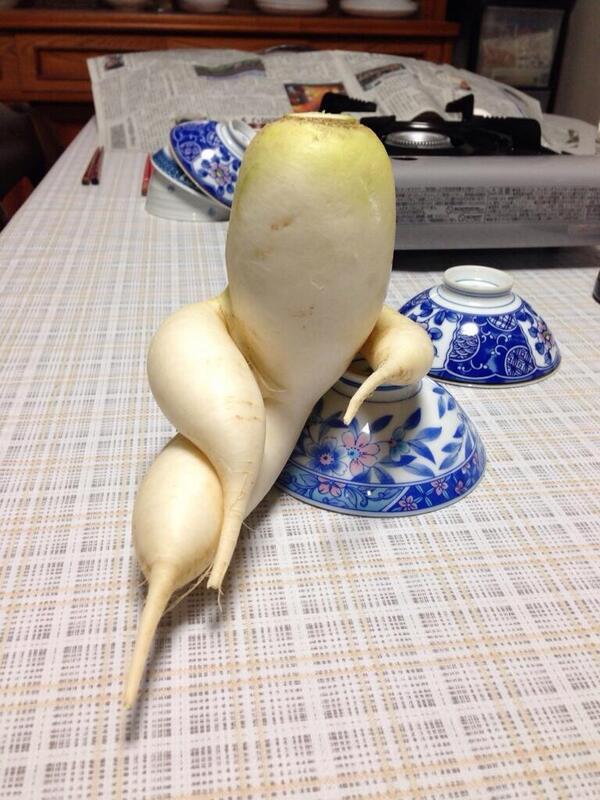 sex-radish