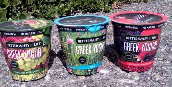 whey protein greek yogurt-7370