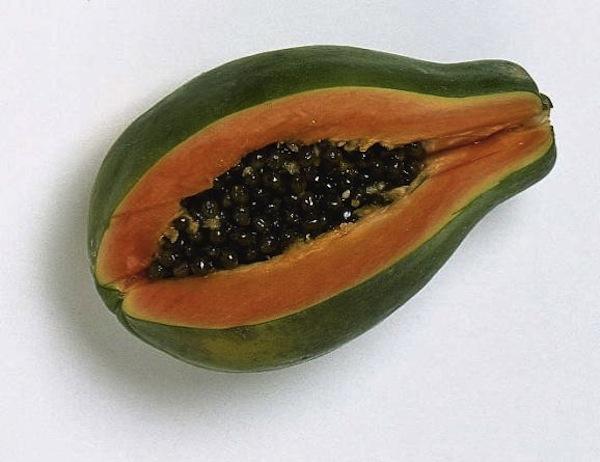 00070065-0000-0000-0000-000000000000_0d0d4c5b-ff6e-460a-a1b8-1f2b05d77ec0_20120821222514_carica_papaya4
