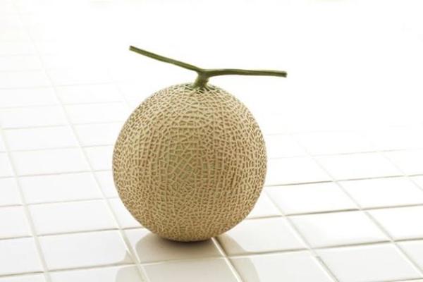 afp-melon-shutterstock